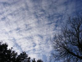 beautiful blue cloudy sky by BlueIvyViolet