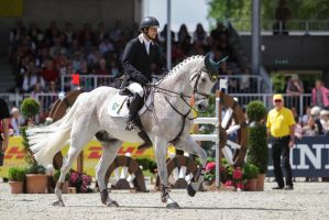 3DE Show Jumping Phase Stock 102 - Cantering by LuDa-Stock