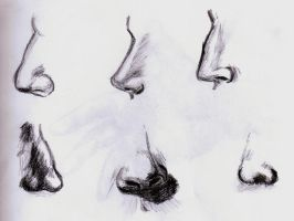 noses by TheLittleCrow