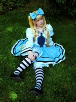 Wonderland Days by Cepiapon