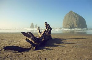 Cannon Beach, Oregon by vovkas