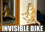 INVISIBLE BIKE by lover234567890
