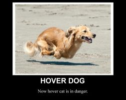 Hover Dog by Airwaveson