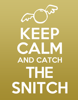 Keep Calm and Catch the Snitch by speakingsoul
