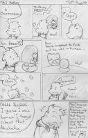 PMD Meteor TToTT Page 47 by BuizelKnight