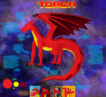 Torch Reference sheet 2014 by M41Aconner