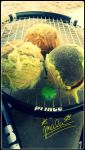 Worn Out Tennis Balls by Platinum15