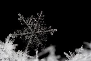 Snow Flake 2 by Alliec
