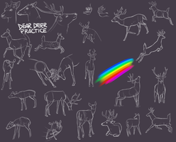 Rainbow, and some deer practice by LonelyGingerWolf