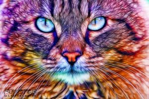 Fluffy Stray Cat: Fractalius Redux by nerdboy69