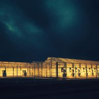 Living In A Glass house by siamesesam