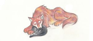 Wolf and Cat Cuddle by darazan