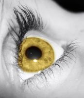 the golden eye 2 by viveie