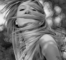 wind by Patricia-b