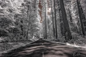 Byways LXX by eprowe