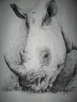 Rhino Ballpoint by Joey-B