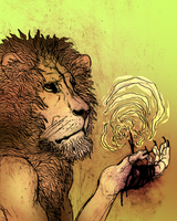 lion by ASHESSS