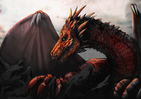 Red Dragon by Buashei