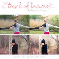 LR preset: Touch of Heaven by DorottyaS