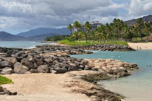 Curved Path on the Beach by AllAboutDianne