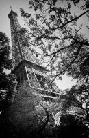 The Unknown Eiffel by dvreflex