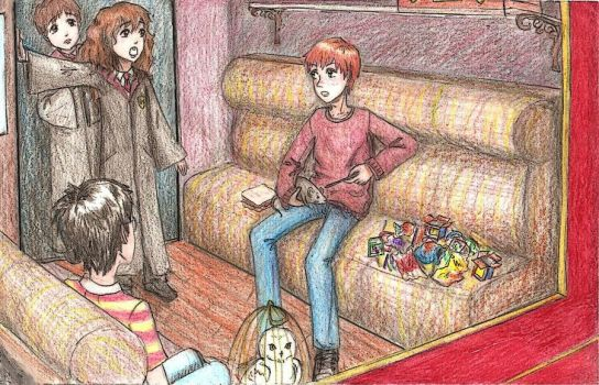 1. Introduction by commoner-pocky