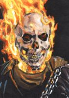 Ghost Rider PSC by tdastick