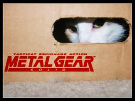 Tacticat Espionage Action MGS by illiara