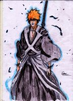 Ichigo's new look by Zangetsu552