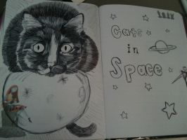 cats in space 2 by StellalunaRavenwolf