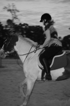 Canter Transition by SarahCatherinez
