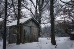 Little Lost Shed in the Woods by ViridianRoses