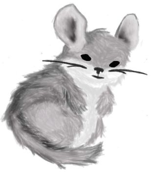 Chinchilla by padfoot369