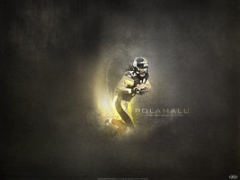 Troy Polamalu by Crazy-Blazey