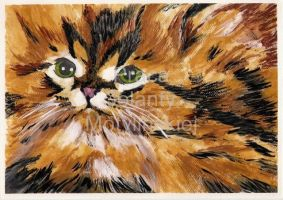 Persian Cat by jolabrodnica
