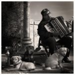 dogs and acc.player... by denis2