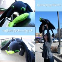 Toothless Plushie With Fish by Dragonflyfaerie