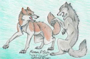 Wolf Fight by Falcolf