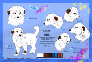 Nuage_Character-sheet by Aquene-lupetta
