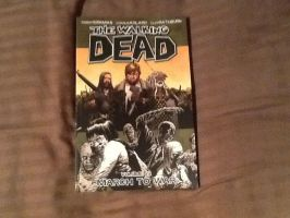 The Walking Dead Comic Book vol 19 by extraphotos