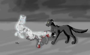 FeatherxCrow by Moonflight-RiverClan