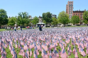 Memorial Day, Sea Of Flags 14 by Miss-Tbones