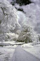 The Park in IR 2 by SnowPoring