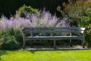 A lilac bench by Eiande