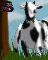 The cow goes Moo by sammacha