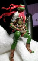 Raph of Persia by Jarred706