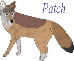 Patch the Coyote by sliverwolf018
