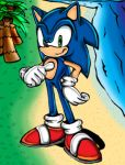 Sonic at the Beach by spdy4