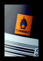 Flammable by dantesstyle