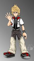 Roxas - Finished by purplelemon